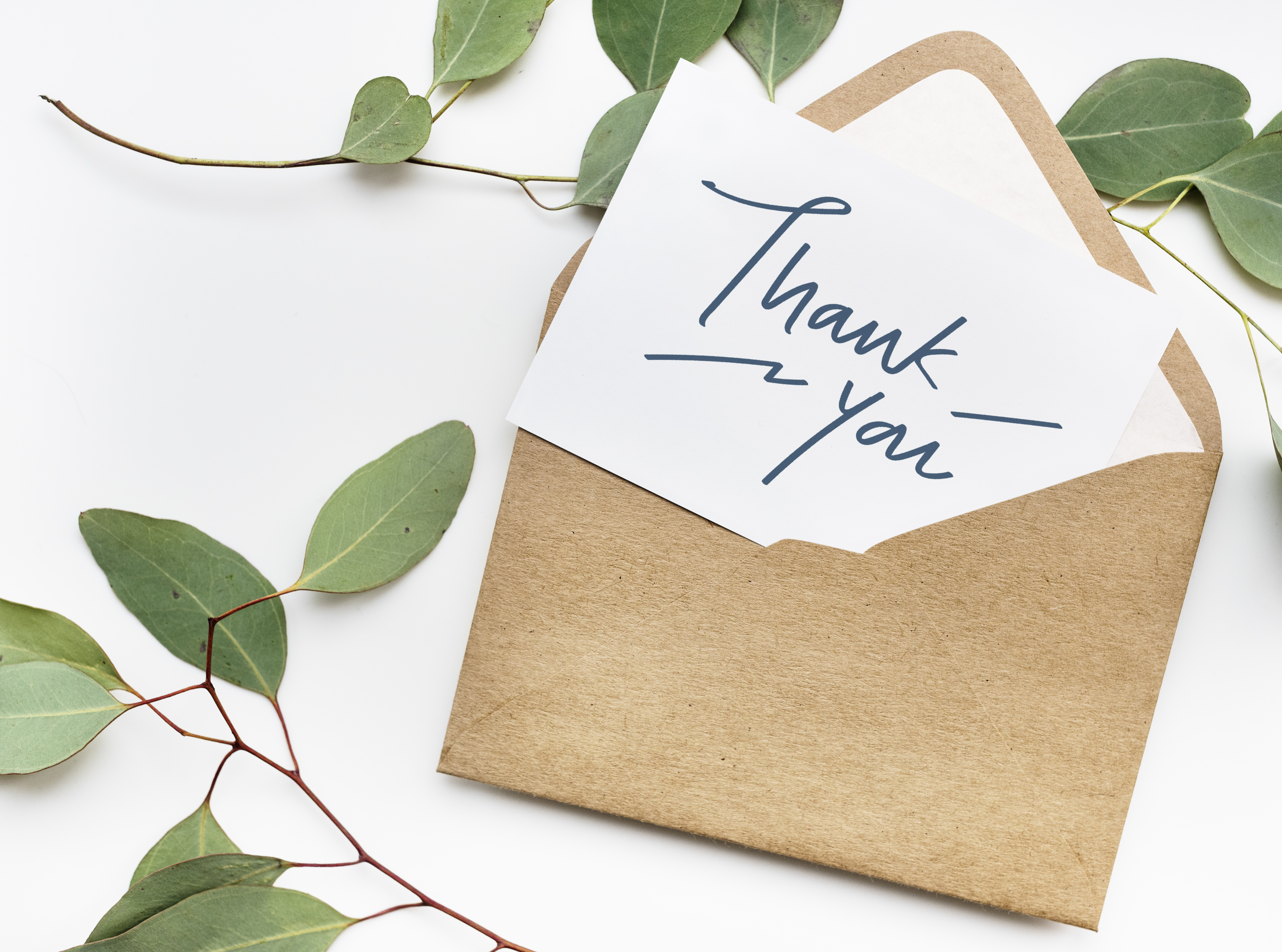 Thank You Cards Activity
